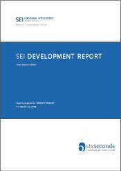 SEI Development Report